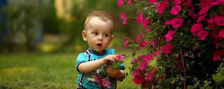 Baby 1531068 1280